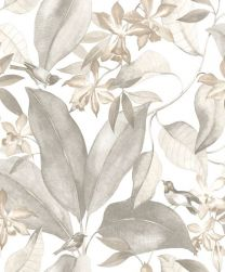 DELICACY BIRDSONG TAUPE / GRIS